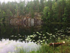 Nikkijärvi280817_3